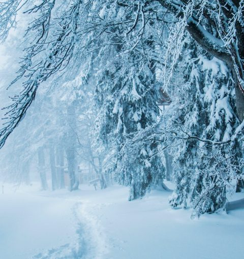 Обои на iPhone со снегом
