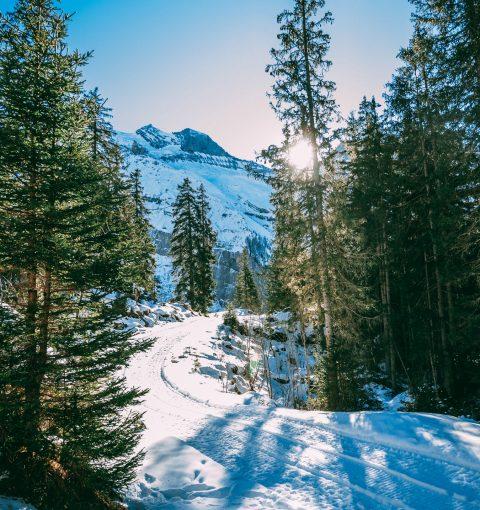 Снежные пейзажи на iPhone